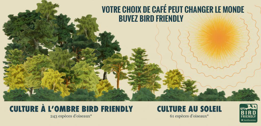 Blogue ExploreVS Vaudreuil-Soulanges mai 2020_Café Bird Friendly du Centre Le Nichoir